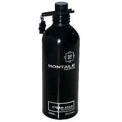 Montale  |  Steam Aoud
